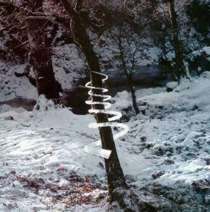 Andy Goldsworthy, Icicle Spiral (Treesoul) , 1985, Dumfriesshire, Scotland