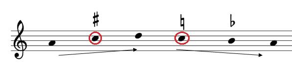 Musica ficta4